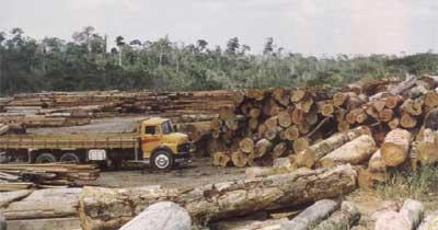 pag33 1 Satélite russo brasileiro vai monitorar desmatamento
