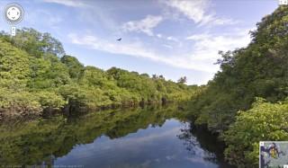 StreetView_Amazonia