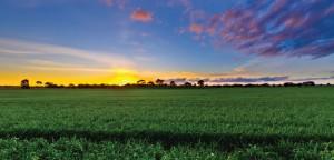 pag36 1 300x144 Incra informa sobre mudança na certificação de imóveis rurais