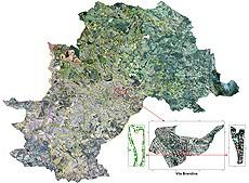 Embrapa usa imagens de sat%C3%A9lite para avaliar arboriza%C3%A7%C3%A3o urbana de Campinas Embrapa usa imagens de satélite para avaliar arborização urbana de Campinas