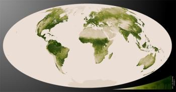 mapa de vegetación de la superficie terrestre