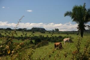02 10 acervo mda paisagem rural Incra e TCU prorrogam acordo que possibilita acesso a informações sobre imóveis rurais