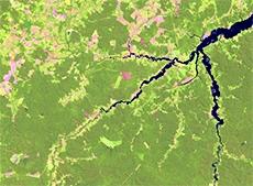 amazonia Embrapa Monitoramento por Satélite seleciona bolsistas