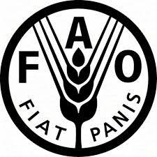 FAO FAO abre vaga para consultor em GIS e geoprocessamento