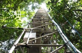 Torre de monitoramento