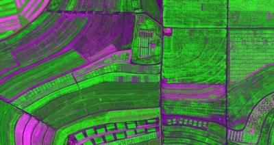 Imagem de Satélite de área de soja com correção atmosférica pelo modelo de transferência de radiação. Seminário online vai abordar a aplicação de dados remotos multissensor
