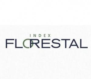 index-florestal-analista-estagiario
