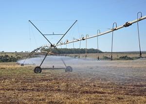 article 300x214 Brasil está entre os países com maior área irrigada do mundo