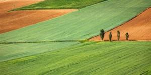 aaa1 300x150 Associação Brasileira de Bancos adota sensoriamento remoto de áreas agrícolas