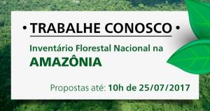 trabalheconosco IFN Amazonia Manaus AC MA TO 300x158 Edital: coleta de dados para Inventário Florestal Nacional na Amazônia
