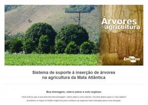 article1 300x214 Site ajuda agricultor na escolha de árvores nativas da Mata Atlântica