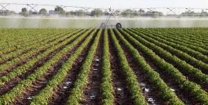 agrobusiness 300x152 Máquinas autônomas fazem agribusiness adotar monitoramento remoto