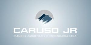 slide site e1390850928142 300x150 Caruso Jr Estudos Ambientais & Engenharia abre vaga para área de SIG