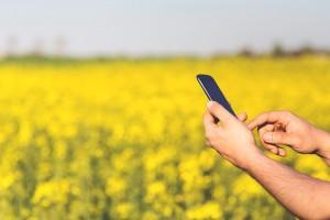 agricultura high tech 300x200 IDGeo seleciona Desenvolvedor Web para área de Agronegócio