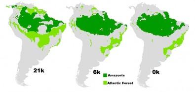 Pesquisa Identifica áreas Para Conservação Na Amazônia E