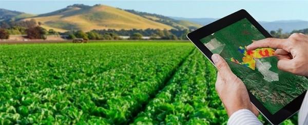 Inteligencia artificial para controlar la fertilidad del suelo 600x244 Inteligencia artificial para controlar la fertilidad del suelo