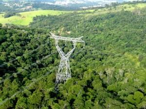 ARA2TAU – Vegetacao nativa conservada em montagem de estrutura 300x225 Copel obtém licença para operação de linha de transmissão com apoio da Geoambiente