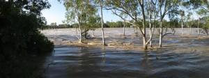 escolas perto de lugares de risco 300x112 Desastres ambientais colocam em risco comunidades escolares