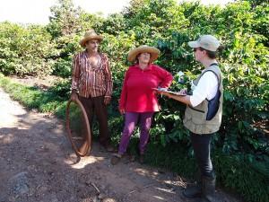 levantamentos de campo 300x225 Levantamentos revelam diversidade florestal do Paraná