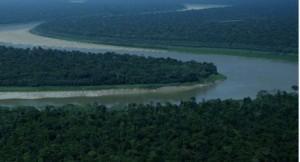 aquecimento na amazonia 300x162 Impactos na Amazônia podem afetar clima e transformar floresta em savana