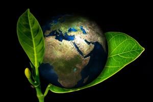 curso de analise ambiental 300x199 UFPR abre processo seletivo na Especialização em Análise Ambiental