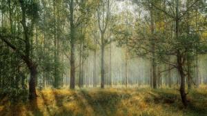 gestao para empresas florestais 300x168 Inflor e Maxitree apresentam tecnologia para empresas florestais
