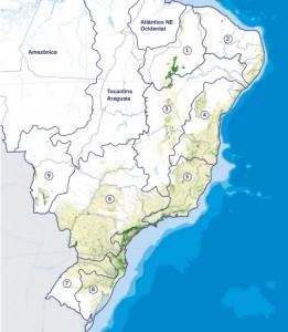 qualidade dos rios brasileiros 261x300 Fundação SOS Mata Atlântica apresenta retrato dos rios brasileiros
