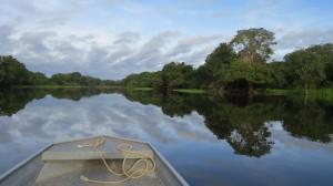 rio brasileiro 300x168 Fundação SOS Mata Atlântica apresenta retrato dos rios brasileiros